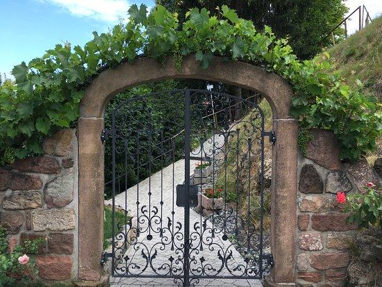 Kappelrodeck, Niemcy: Blick von der Terrasse