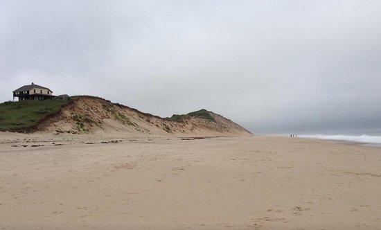 Truro, MA: Beautiful Dunes