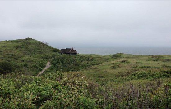 Truro, MA: The view from the top, before walking down