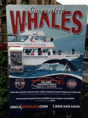 Anacortes, WA: Island Whale Watch sign