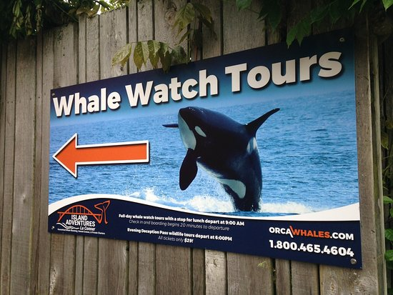 Anacortes, WA: Island Whale Watch directional sign