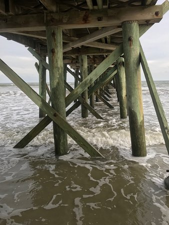 Isle of Palms, SC: photo1.jpg