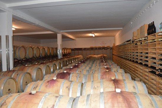 Monsaraz, Portugal: the cellar