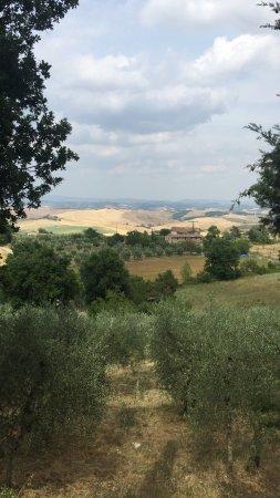 Murlo, İtalya: photo1.jpg