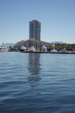 Beautiful View of Downtown Nanaimo