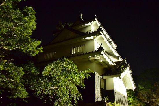 Yoshida Castle: photo0.jpg