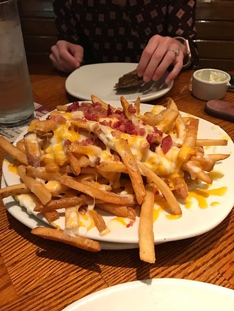 Outback Steakhouse Best Cheese Fries In The World
