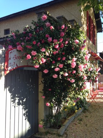 Cadenet, France: entrée de la terrasse dans le jardin