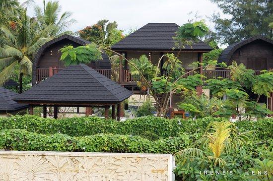 Lush greeneries surrounding the Villa
