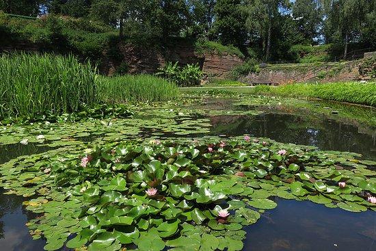 Der Seerosenteich Picture Of Killesberg Park Stuttgart Tripadvisor
