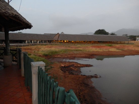 Neslo Tours and Travels Day Tours: Vio Wildlife Lodge