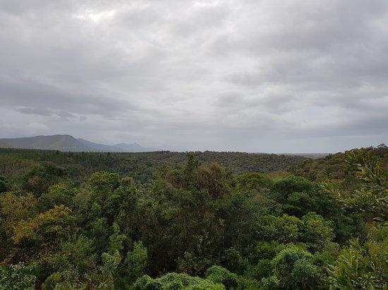 Nature's Valley, Güney Afrika: 20170620_091246_large.jpg