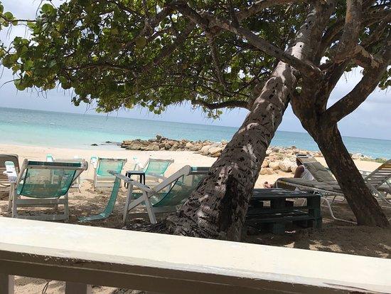 Coconut Grove Restaurant: photo1.jpg