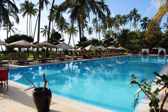 Dream of Zanzibar-bild
