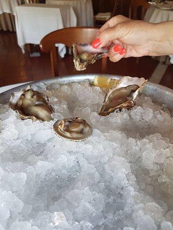 Ristorante Il Baco Da Seta: ostriche