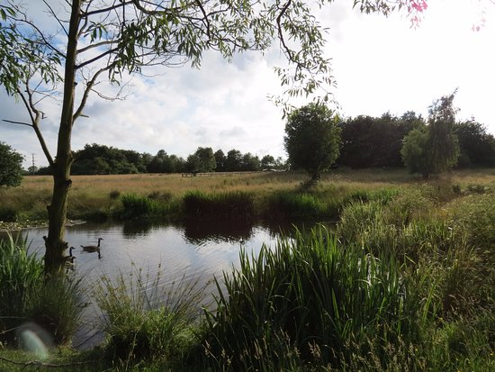 Ormskirk, UK: The onsite fishing lake