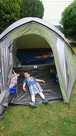 Ormskirk, UK: You would think he put the tent up!!