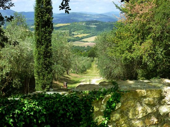 An Umbrian Gem