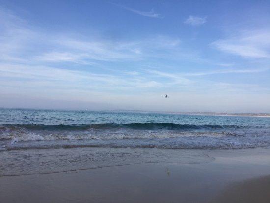 Carbis Bay Beach : photo5.jpg