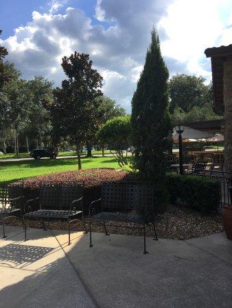 Olive Garden Tampa Omd Men Om Restauranger Tripadvisor