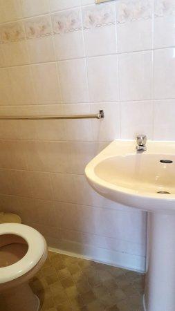 Alumhurst Hotel: orca-image-1498229595232_large.jpg