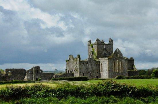 Campile, Ирландия: inviting