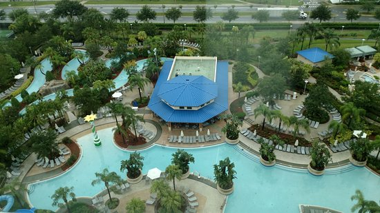 Hilton Orlando: 15th floor pool view