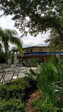 Hilton Orlando: Tropics pool bar