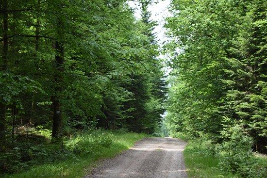 Sieradowicki Landscape Park