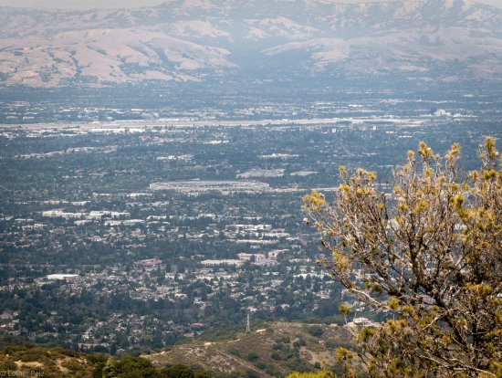 Cupertino, CA: The valley with Apple HQ