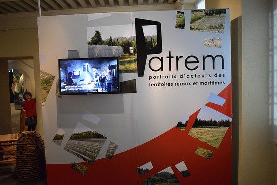 Saint-Remy-de-Provence, France: expo temporaire