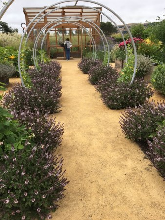 Cornerstone Sonoma Sunset Gardens