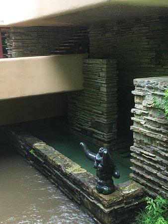 Fallingwater: photo2.jpg