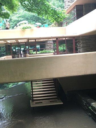 Fallingwater: photo3.jpg