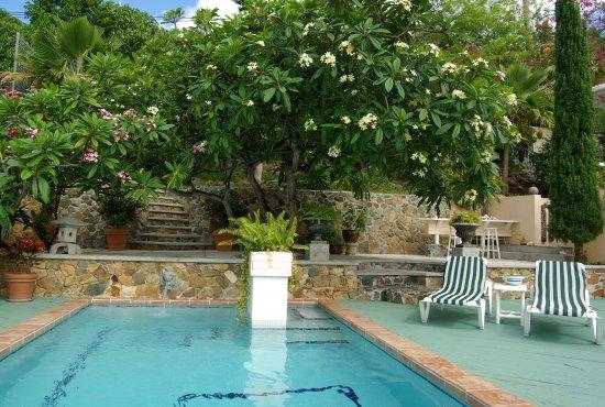 Bellavista Bed & Breakfast: Swimming Pool