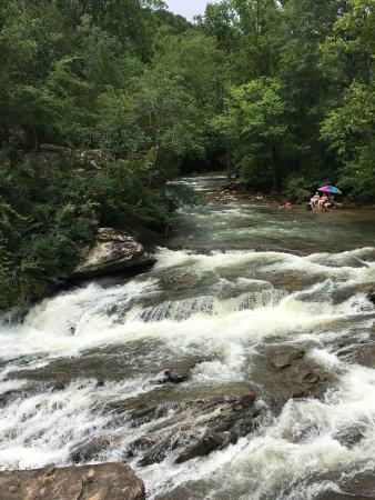 Turkey Creek Nature Preserve: photo0.jpg