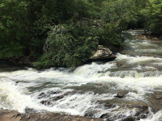 Turkey Creek Nature Preserve: photo2.jpg