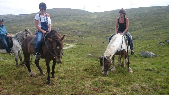 Oughterard, Irland: Knockillaree Riding Centre