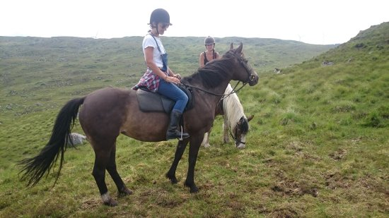 Oughterard, Irland: Knockillaree Riding Centre