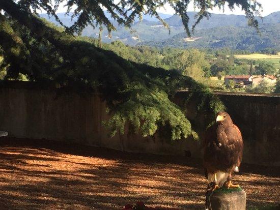 Vicchio, Italien: photo2.jpg