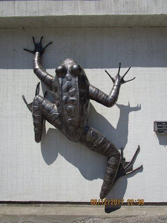 Castlegar, Canada: Impressive frog sculpture.
