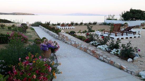 Drios, Grecia: A part of our garden