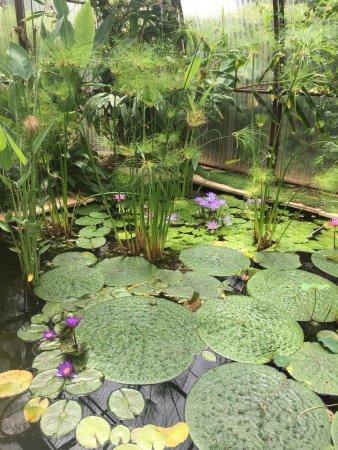 Chaumont-sur-Loire, France: Garden exhibit