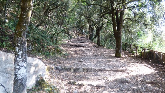 Monteluco, Italy: Percorso Via Francigena di San Francesco