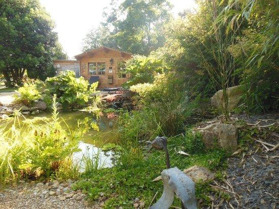 bassin et cascade, côté Zen du jardin. - Photo de MANOIR DESNACHEZ ...