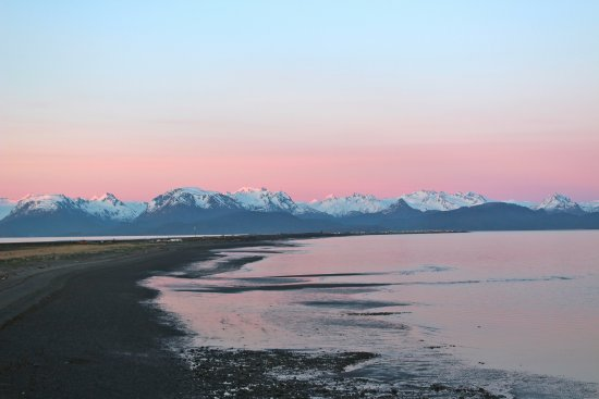The Alaska Beach House: Eagle's nest view