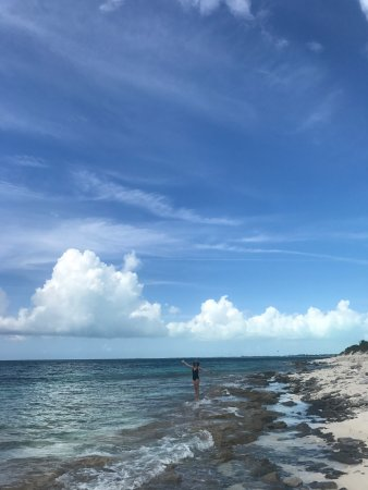 Parc National de la Princesse Alexandra : Smith's Reef