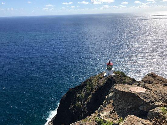 Makapuu Lighthouse Trail: photo2.jpg