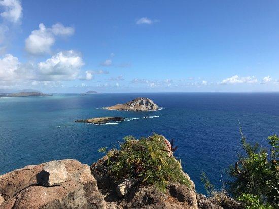 Makapuu Lighthouse Trail: photo5.jpg