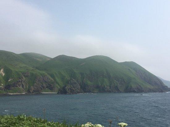Rebun-cho, Japan: photo5.jpg